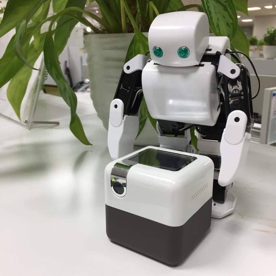 PLEN Cube Robot