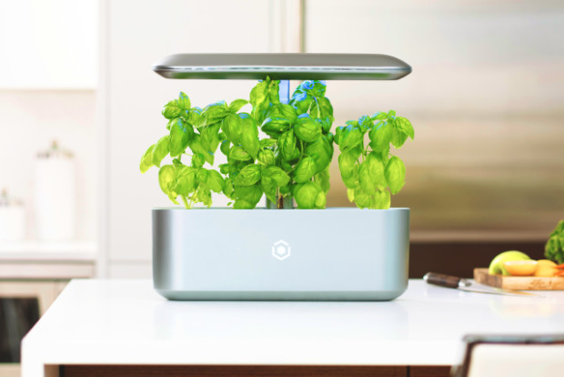 AVA Byte: Be your own smart farmer at home