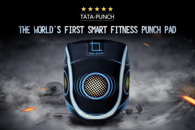 TATA-PUNCH: Interactive fitness with a punch
