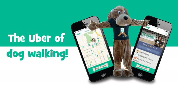 Uber Dog Walking App