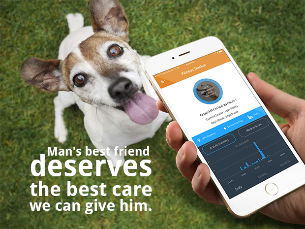 Connected pet startup BarbelBark raises $2.8 million to connect you to your dog and the people you trust