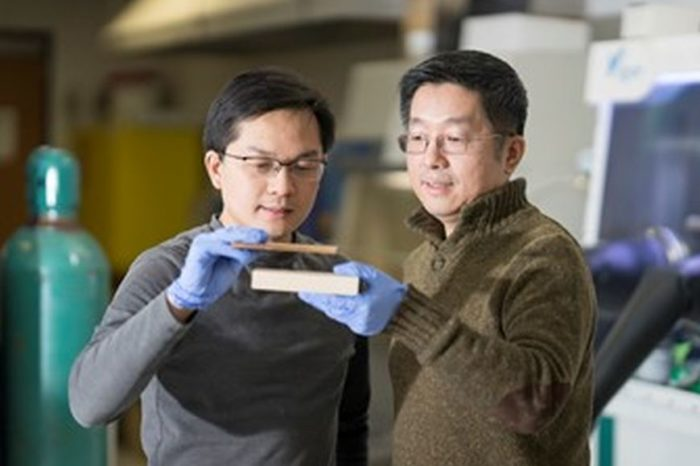 Researchers create 'Super Wood' that is stronger and lighter than steel and strong enough to stop a bullet