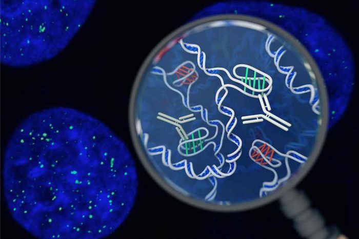For the First Time Scientists Discovered New Form of DNA Structure Living Inside Human Cells (New DNA Discovery)