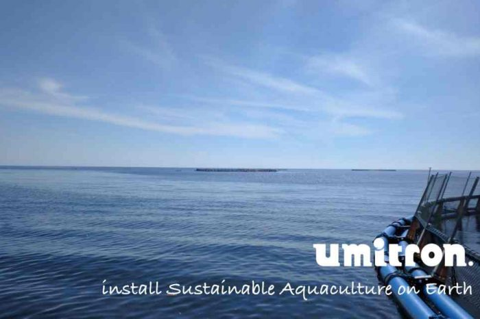 Umitron launches data service for aquaculture insurance leveraging IoT and satellite remote sensing with US$11.08 million in early stage funding