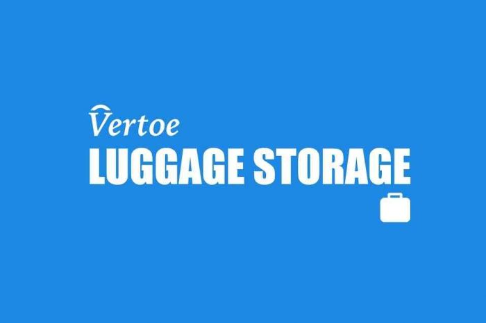 New York startup Vertoe raises $1.85 million to grow its on-demand short-term storage for travelers