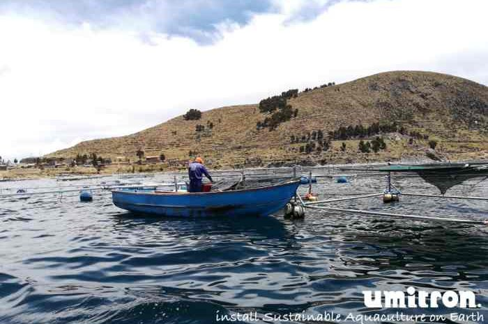 Singapore startup Umitron secures US$2 million in project funding to deliver IoT and AI technology to drive growth of sustainable aquaculture in Lake Titicaca, Peru
