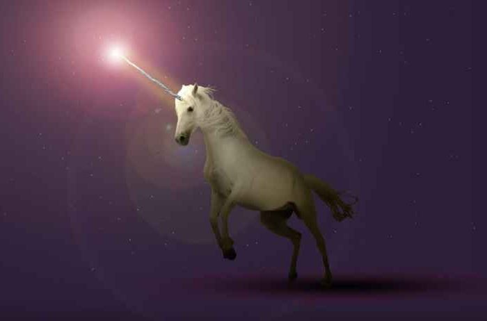50 startups with most chances of becoming unicorns