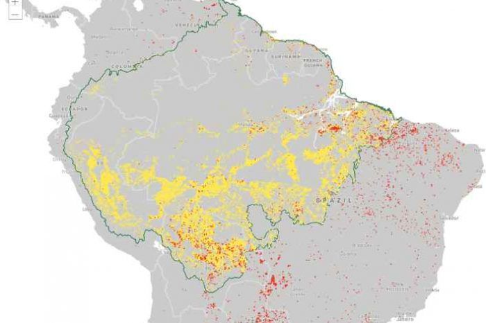 Logi Analytics and Conservation International Team Up to Launch Real-Time Dashboard of Amazon Rainforest Fires