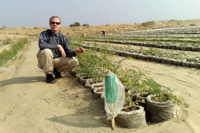 This startup is fighting climate change by turning desert into fertile soil