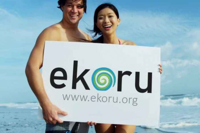 Ekoru.org is the New Search Engine that Helps Clean and Reforest Our Oceans