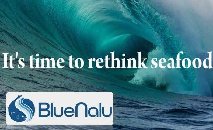 Food startup BlueNalu raises $20M Series A funding to produce seafood directly from fish cells