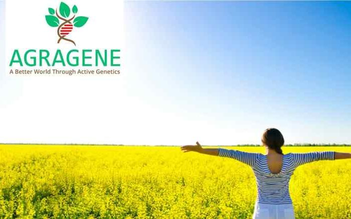 Sustainable agritech startupAgragene raises $1.2M seed funding for organic crop pest control using CRISPR-based genome engineering