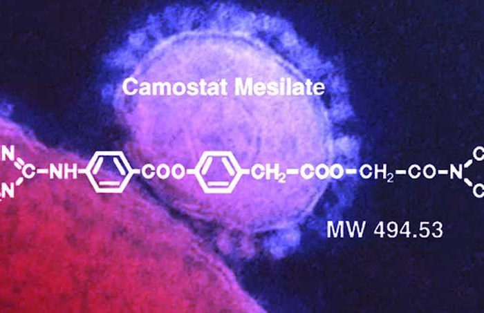 Coronavirus Trial: Danish researchers are starting a clinical trial of a drug named camostat mesylate that targets human protein and indirectly treats COVID-19 patients