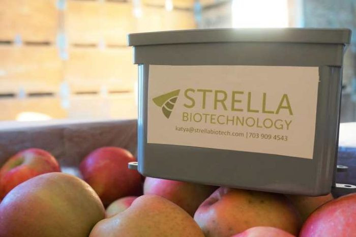 Food supply chain tech startup Strella Biotech raises$3.3M seed funding to take on the challenge of $1 trillion in global food waste