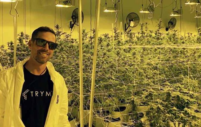 Cannabis tech startup Trym raises $3.1M in seed funding for its farm management software built for the cannabis cultivators