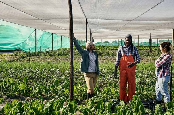 AgriTech startup Apeel secures $30M in funding to fight the $2.6 trillion-dollar global food waste and helpsmallholder farmers in emerging markets join the global food system