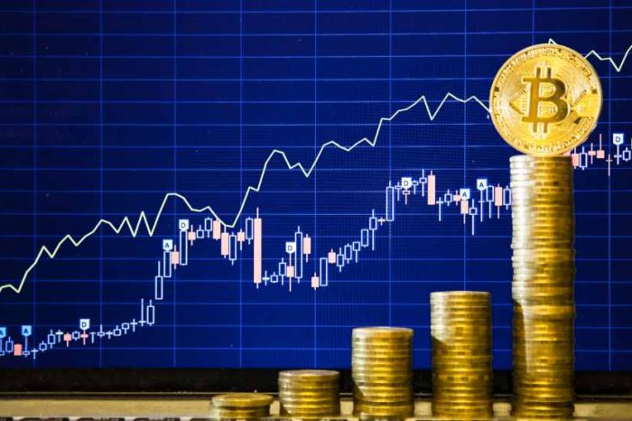 Crypto investors open to investing 50% of their savings into cryptocurrencies, a new survey shows