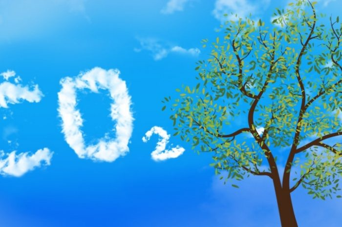 Is CO2 really a pollutant? Here is the history of how carbon dioxide became a 'pollutant'
