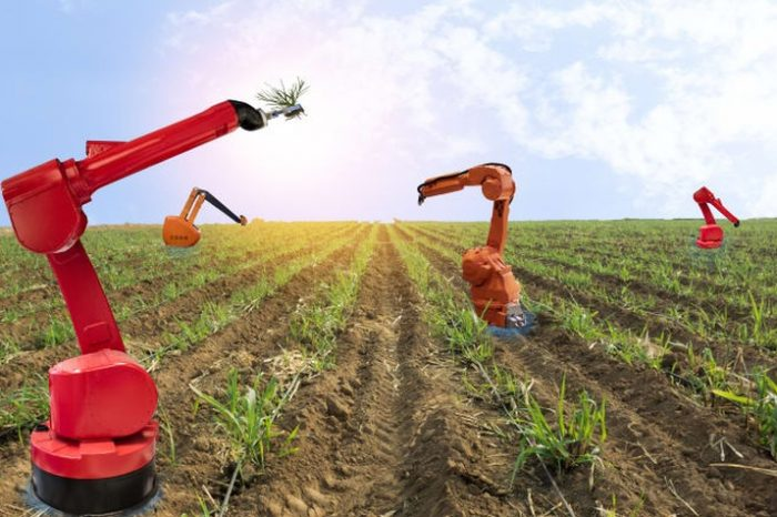 How digital tools can help transform the farming system