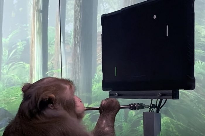 Elon Musk's Neuralink shares a video of a monkey playing a video game with his mind using a brain chip