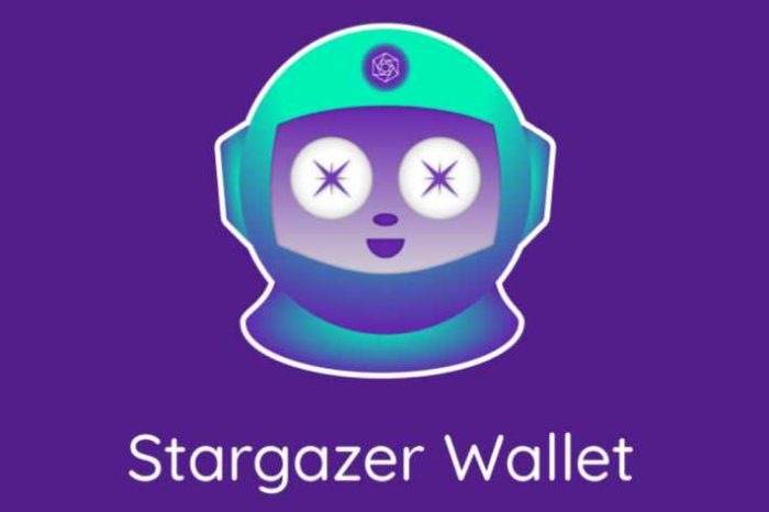 Constellation's Stargazer Wallet integrates Givebox forFiat Onramp; gives donation to charity