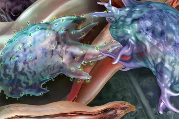 Pfizer to buyCanadian cancer biotech company Trillium Therapeutics for $2.3 billion