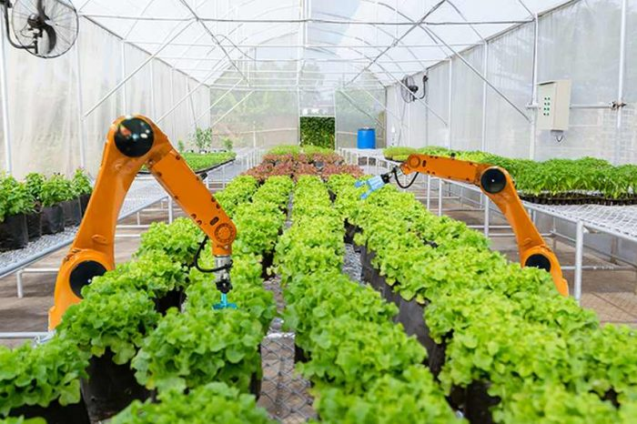 Bill Gates leads a$50 million investment in green tech farming robot startupIron Ox togrow produce more sustainably